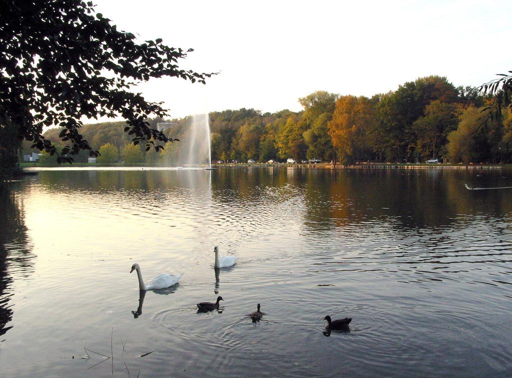 Het meer van Genval.